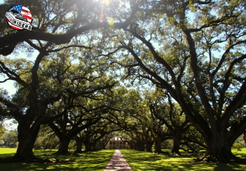 Book Riders - #magicLouisiana - Oak Alley Plantation